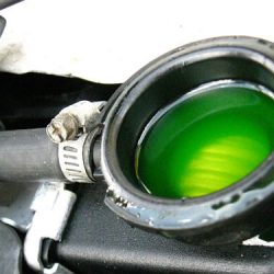 Coolant and antifreeze