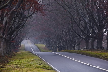 Scary road, cursed road of England
